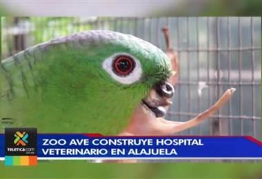Hospital veterinario en Alajuela