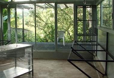 Zoo Ave contruye hospital veterinario en Alajuela