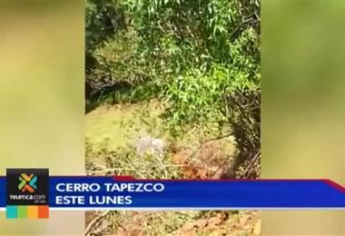 Alertan sobre movimiento violento de material en cerro Tapezco