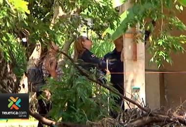 Menor que falleció en Bagaces tras caerle una viga era un destacado estudiante
