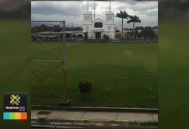 Plaza iglesia de San Rafael de Alajuela