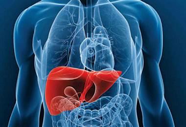 Aprenda a detectar los signos de alerta del hígado graso