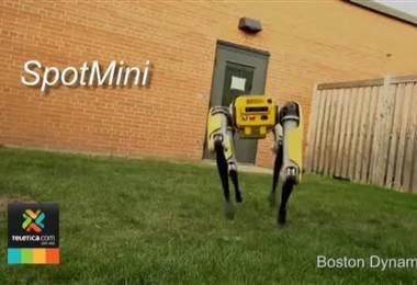 Crean ágil robot con la figura de una mascota robótica
