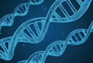 ¿Está nuestro destino escrito en el ADN?