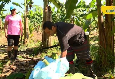 Fideimas financió a pareja agricultora empezar su propio negocio