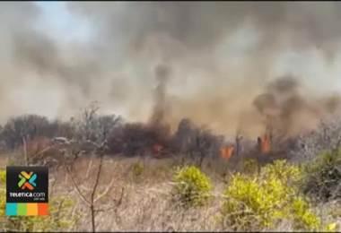 Bomberos se prepara para temporada de incendios forestales y capacita a 100 efectivos