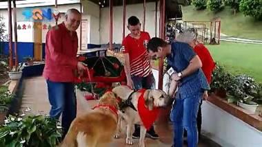 En Acosta encontramos a la familia Clos muy particular.  Acá los renos que tradicionalmente jalan el carruaje de Santa, fue cambiado por perros hermosos y grandes.  Se trata de una familia quienes brindan el espectáculo canino por todas partes del país.  Los perros son entrenados para tratar con niño y brindar un show de primer mundo.