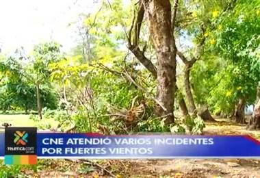 CNE atendió varios incidentes por fuertes vientos