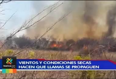 Cuerpo de bomberos advierte sobre el incremento en incendios forestales en esta época del año