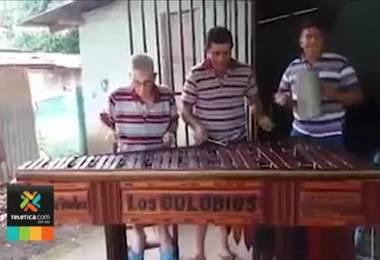 Profesor de música de Santa Cruz siembra árboles para poder fabricar marimbas