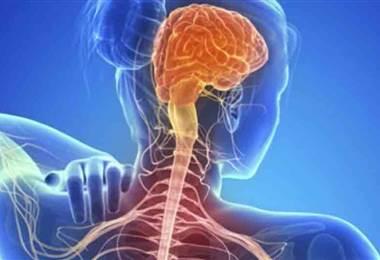 ¿Qué es la esclerosis múltiple y por qué ocurre?