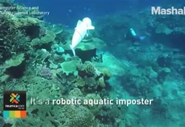 En el Instituto Tecnológico de Massachusetts crearon un pez robot para espiar a otros peces