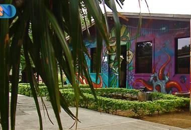 """Se trata de """"Club House"""", un proyecto de la Casa de la Cultura de Mora que busca acercar a los muchachos de la comunidad a carreras digitales."""