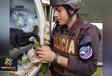 Autoridades fronterizas preocupadas por trasiego ilegal de animales
