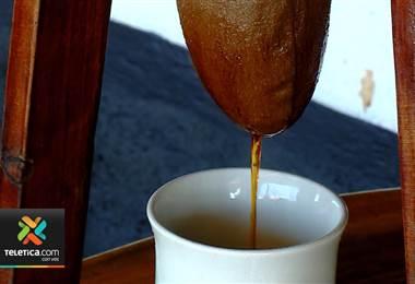 Mejores cafés del país compiten en la Taza de la Excelencia