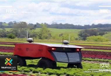 Inteligencia artificial cambiará métodos en la agricultura en los próximos años