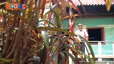 Don Ignacio del Carmen López vive en Montano de Bagaces, un pequeño pueblo ubicado a unos 30 minutos del centro del cantón. Es oriundo de Cañas, pero hace 45 años vive en este pueblo, aquí crio a los hijos y sepultó a la señora.   Este señor con más de un siglo de vida todavía come, se baña y camina solo. ¿Cuál será la clave? En el reportaje lo averiguará.