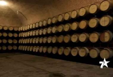México: tierra del tequila pero también del buen vino