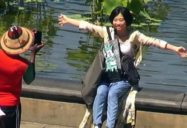 Central Park: uno de los parques más icónicos del mundo