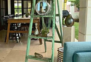 Dele vida a su casa con una escalera vieja y un poco de pintura