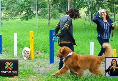 Vecinos de Mata Redonda ya tienen un parque para perros