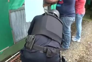 PCD allana empresas exportadoras de piña presuntamente vinculadas al trasiego de cocaína