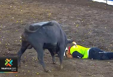 55 toreros improvisados fueron llevados al hospital Calderón Guardia durante festejos