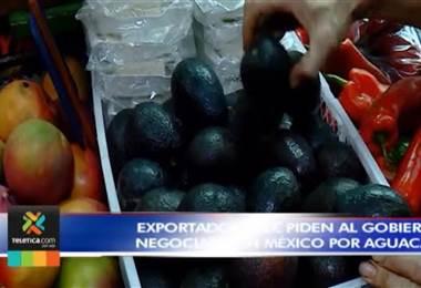 Exportadores le piden al gobierno negociar con México por aguacate