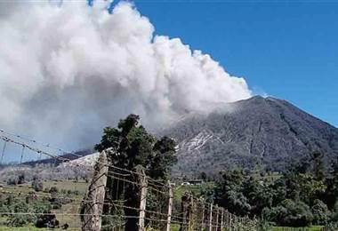 Ceniza volcánica podría ser la causante de sus alergias