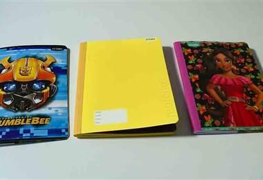 Escoja los cuadernos adecuados para sus hijos