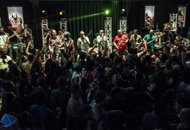 Finca Fest. Organización