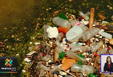 Proyectos de ley para acabar con el uso del plástico en el país generan opiniones encontradas.
