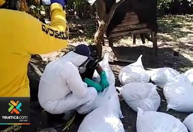 Policía de Fronteras realizó decomiso histórico de cianuro en la Frontera norte