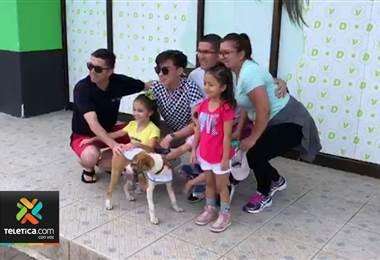 Decenas de mascotas encontraron un hogar este domingo