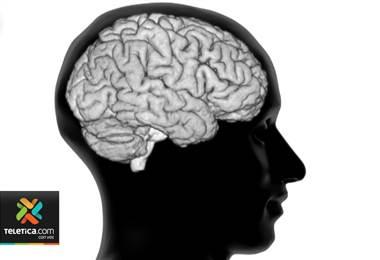 Estudio molecular podría revelar posibles tratamientos de Alzheimer.