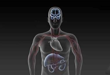 Conozca los riesgos de la presión arterial inestable