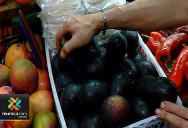 Cámara de Agricultura cree que el país ganará conflicto del aguacate
