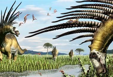 Las espinas de Bajadasaurus pronuspinax llegaron a medir posiblemente hasta 1,20 mt. BBC
