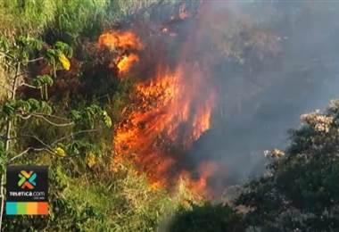 Incendios aumentan en 81% durante primeros meses del año con respecto al 2018, Bomberos