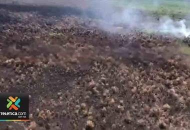 Autoridades del Sinac dan por controlado incendio forestal en Osa