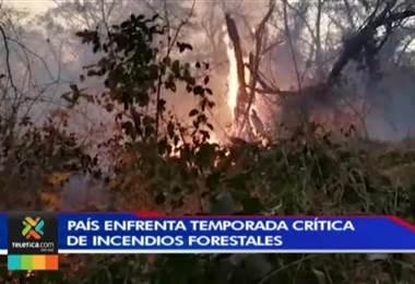 Cuatro áreas protegidas han sido las más afectadas por incendios forestales