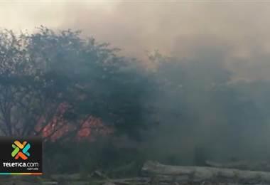 Incendios forestales de los últimos días también han afectado al sector turismo