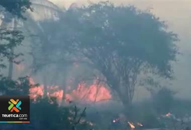 Autoridades de Ambiente llaman a la prevención y denuncia ante gran cantidad de incendios forestales