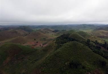 Deforestación de bosques en Guatemala. Foto AFP