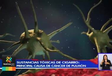 Sustancias tóxicas del tabaco es la principal causa de cáncer de pulmón