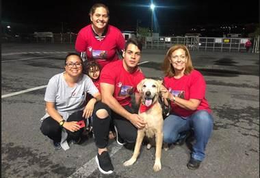 Familia venezolana se reencontró con su perro en Costa Rica tras un año de separación