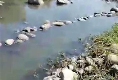 Contaminación en ríos. Foto de archivo