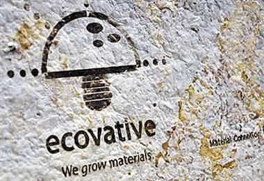 Ecovative ideó y fabricó el producto en el 2006