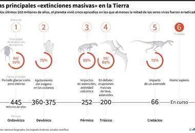 Extinción de especies. Foto AFP