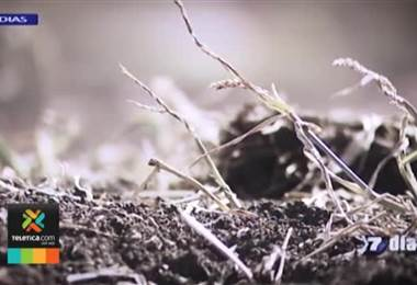 Especialistas llaman a no bajar la guardia ante sequía en el país